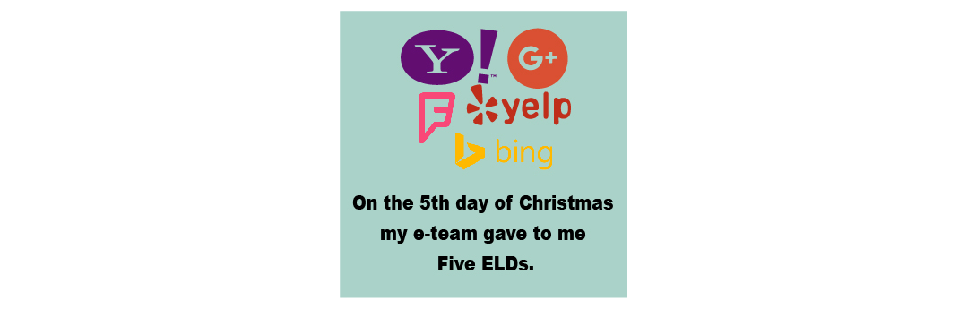 On The Fifth Day of Christmas my e-Team Gave to Me Five ELDs